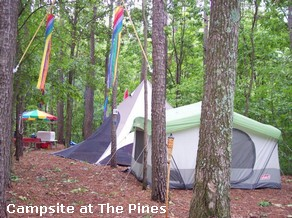 The Pines Gay Campground in Illinois